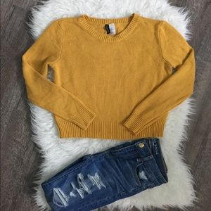 H&M divided mustard cropped crew neck sweater